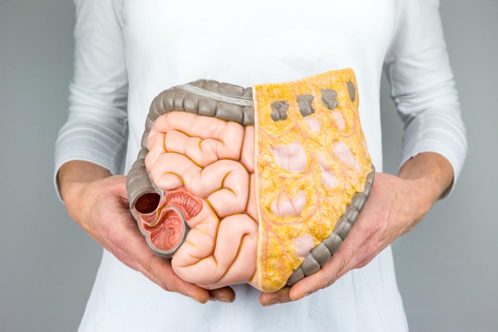 Gezondheid zit in de darmen